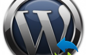 WordPress upgrade: Permitir mais tempo para os servidores lentos
