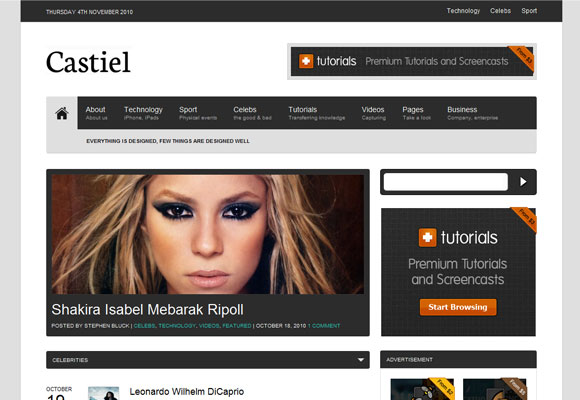 Mais de 70 Magnificos WordPress Themes