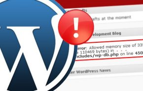 "Como resolver o erro ""Allowed Memory Exhausted"" no WordPress?"