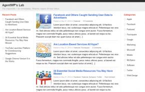 PlusOne tema WordPress similar a Google+