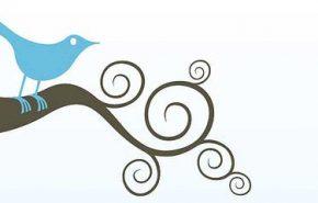 Como exibir o número de seguidores do Twitter no blog