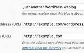 10 passos para proteger seu painel de administração no WordPress