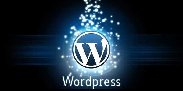 wordpress-plugins-600x300