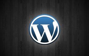 Bugs e solução de problemas no novo WordPress 3.1